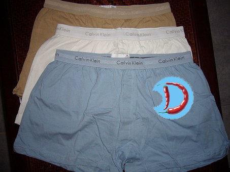 boxer-shorts-335120__340