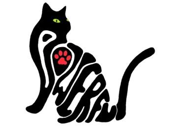 cat4resized